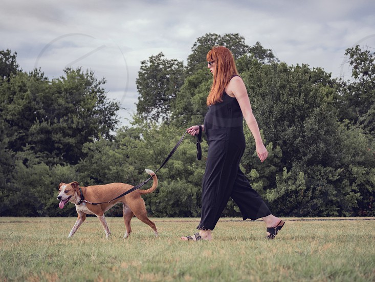 A woman walks her dog in the park.  photo