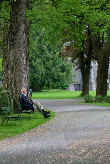 man in black jacket sitting on bench near a tall tree photo