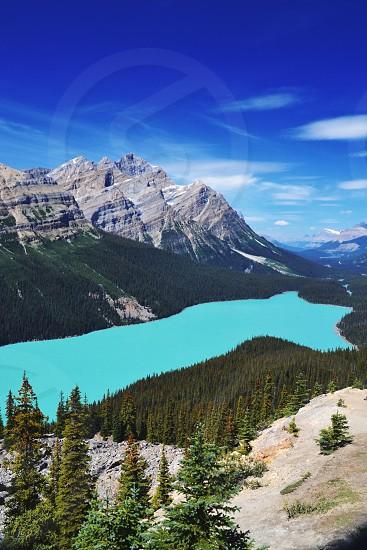 Captivating photo of Peyto Lake in Banff National Park.  photo