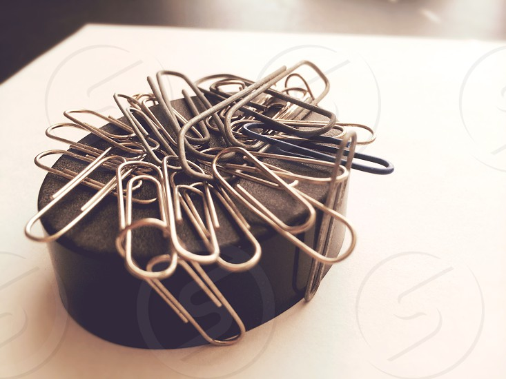 Around The Office. Paper Clips.  photo
