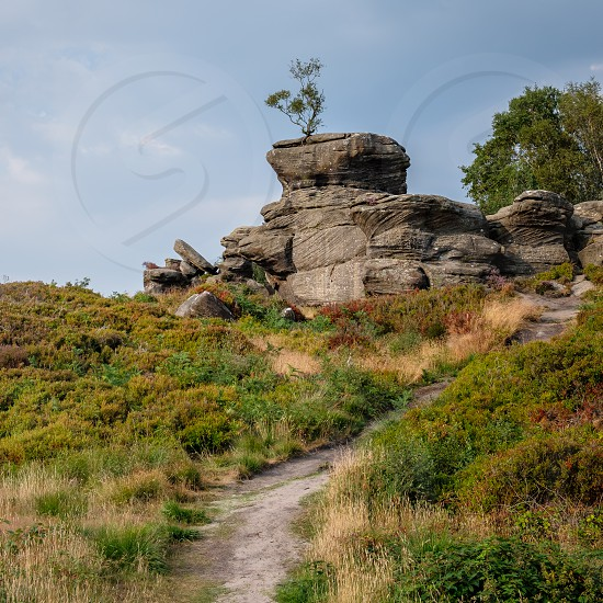 Scenic view of Brimham Rocks in Yorkshire Dales National Park photo