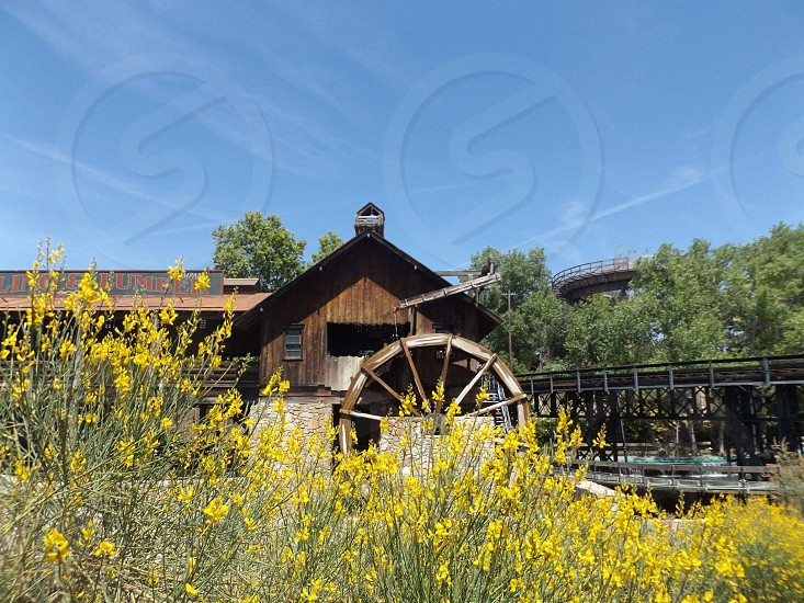 flowers yellow cabin lake spain sun water wheel rides theme park spanish travel photo