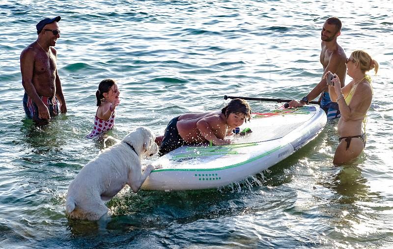 Sea dog vacation family photo