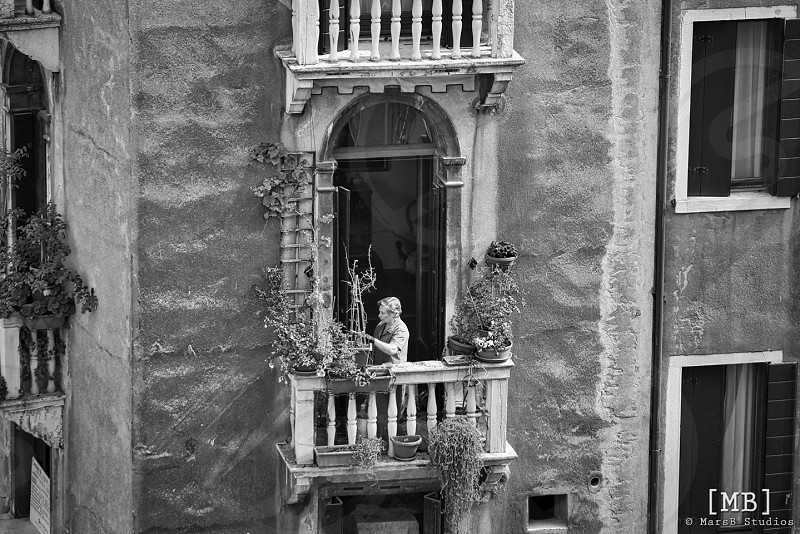 Flowers on a balcony Venice Italy  photo