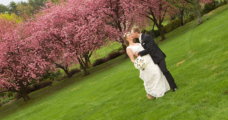 Wedding angle. photo