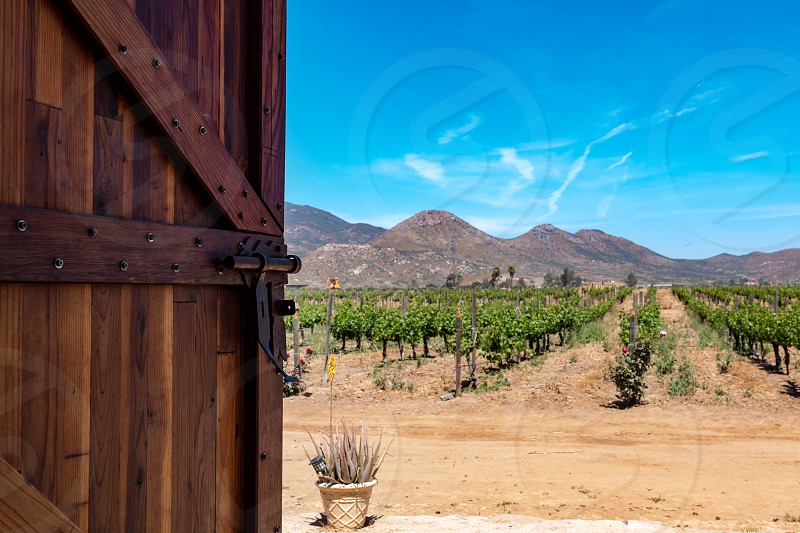 An open door with a view to mountains in the Guadalupe region of Ensenada Baja California.  photo