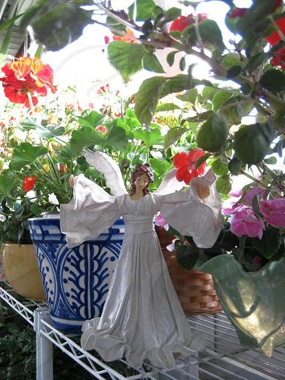 Angel amidst flowers and foliage photo