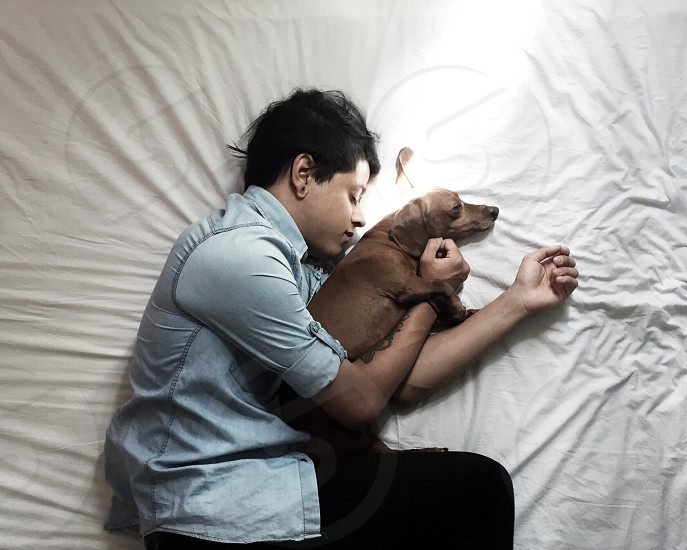 person wearing blue chambray long sleeve shirt sleeping together with brown short coated medium dog photo
