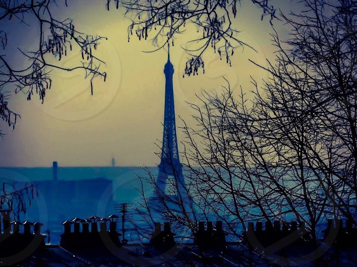 Outdoor day horizontal filter Paris France Eiffel Tower rooftops roof roofs chimney chimneys chimney pots trees branches after sunset evening photo
