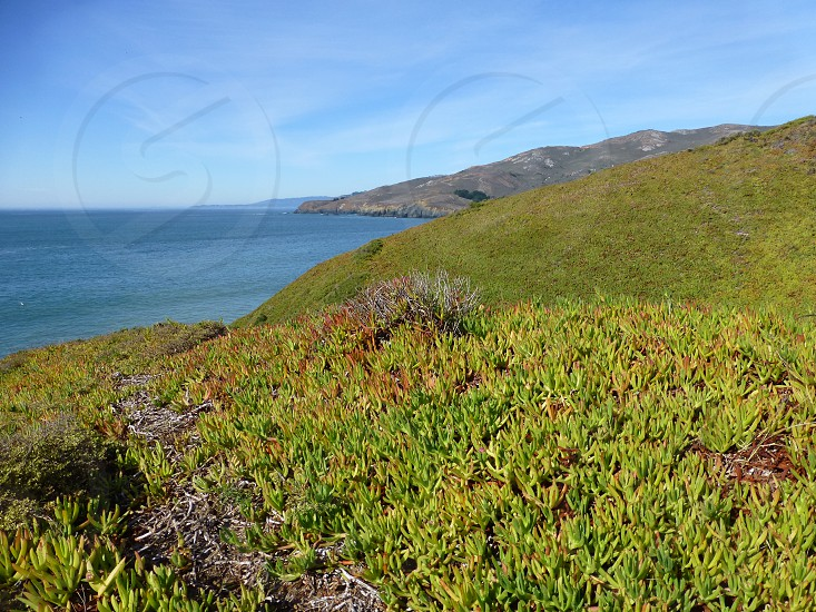 Marin Headlands photo