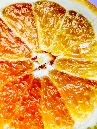 Orange food fruit macro juicy photo