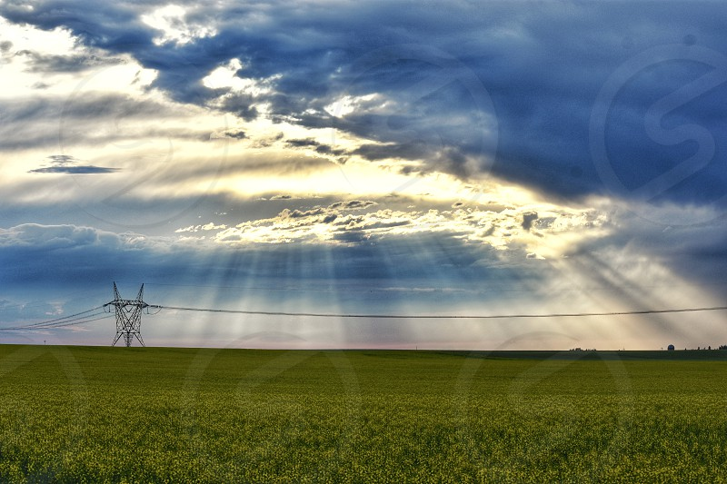 sunshine rays over a lush green field in the warm summer air photo