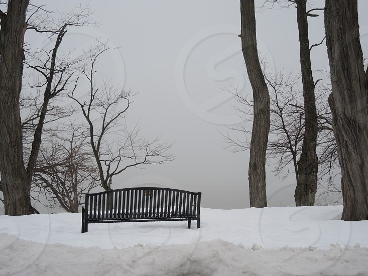 black bench on snow photo