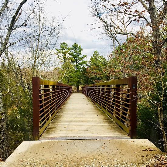 Natural falls bridges  photo