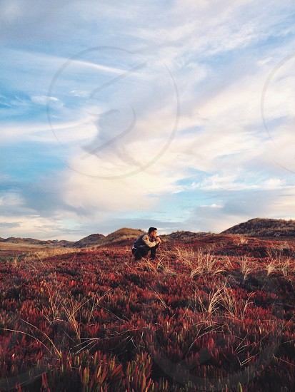 man sitting on red and grass photo