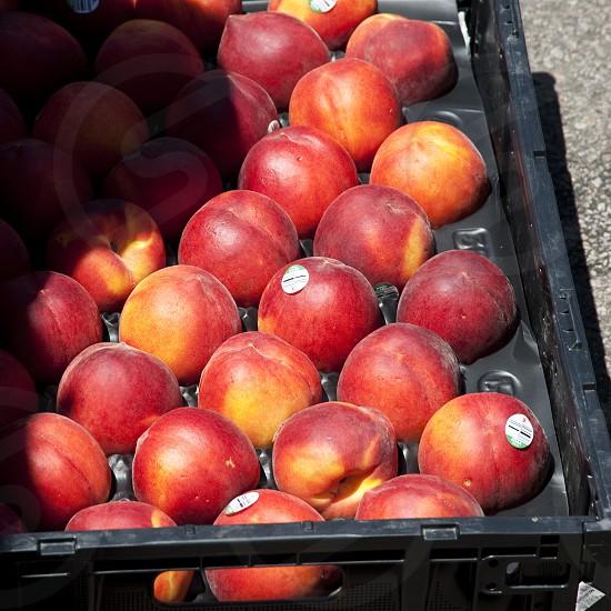 Peaches in black crate photo