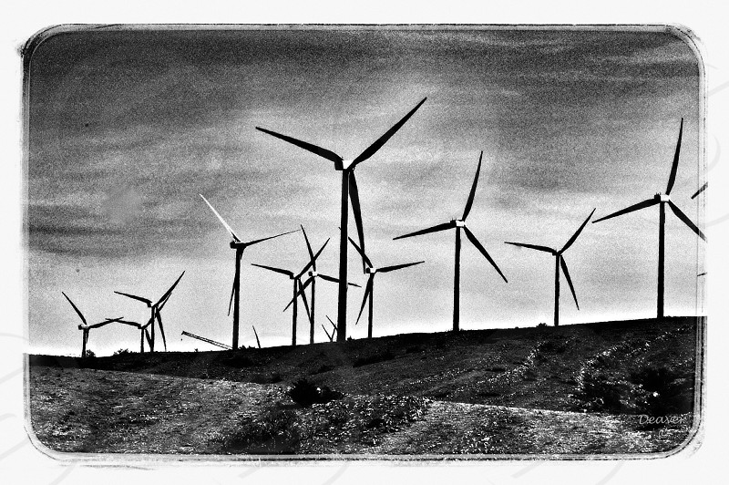 Wind Farm - Wind Chargers - Electric Power - Energy photo