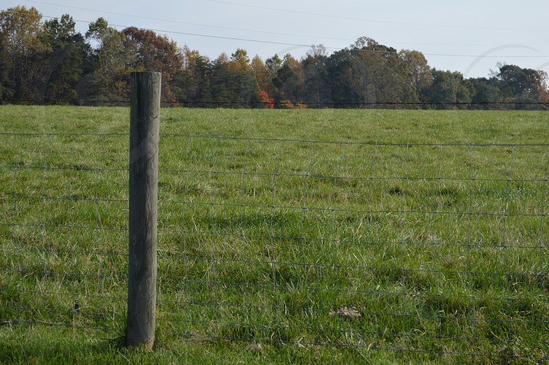 wooden post with barbed wire fence in grass field photo