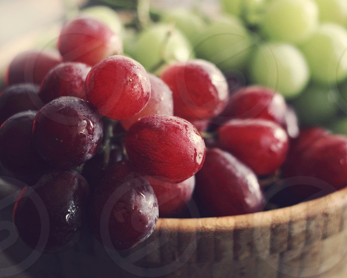 red grapes in tilt shift photography photo