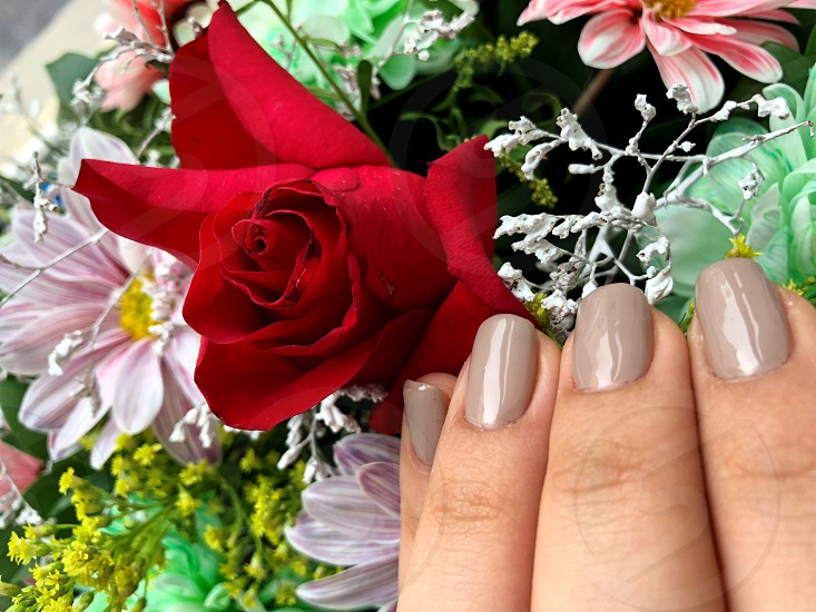 Delicate nails of a young girl with beautiful flowers photo