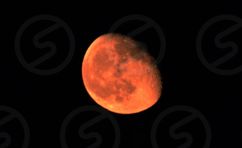 Large Harvest Moon photo