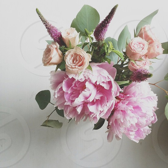 beige rose and pink flower bouquet photo