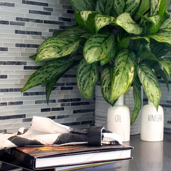 Oil vinegar plant napkin ring napkin book tile kitchen dining room photo