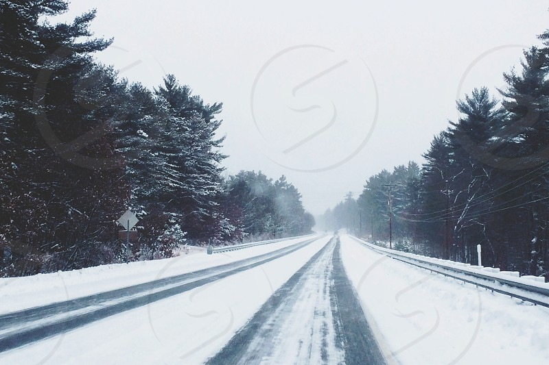clear straight roadway with snow covered inline of green trees under blue sky photo