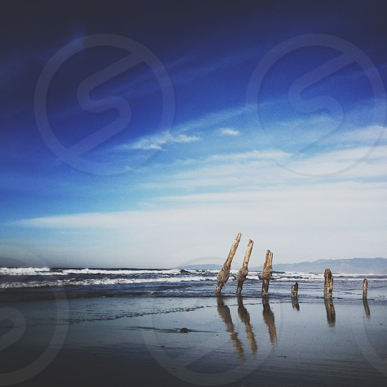 6 woods by the seashore photo
