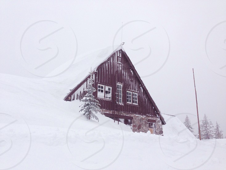 brown wooden house covered with snow photo
