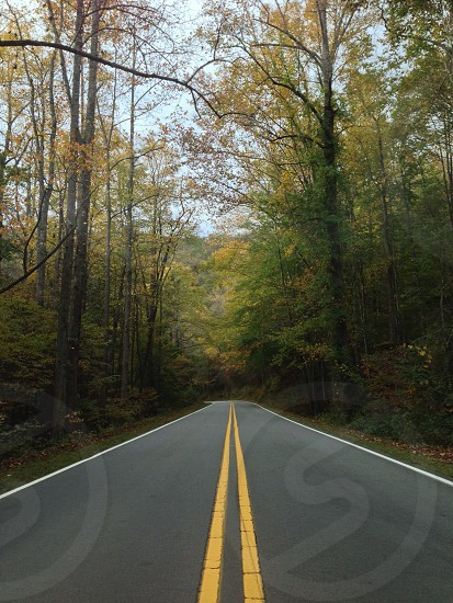 gray and yellow paved road  photo