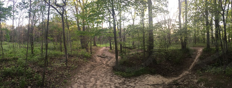 Trail mountain forest photo