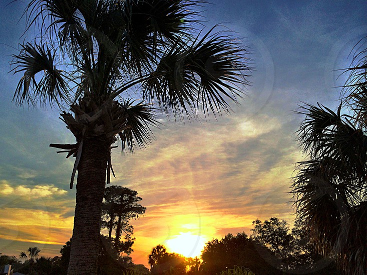A N Florida sunset w/ well-known elements photo