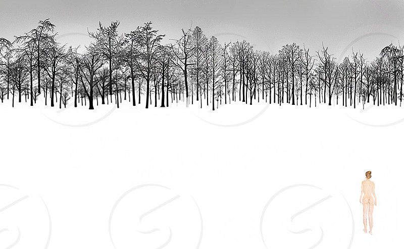 snow cold woman nude trees forest trek frozen white alone landscape winter freezing photo