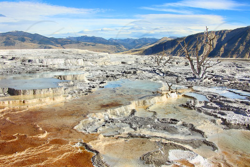Upper Terraces of Mammoth Hot Springs in Yellowstone National Park. photo