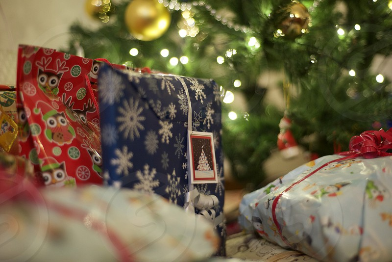 Gifts under the Christmas tree photo