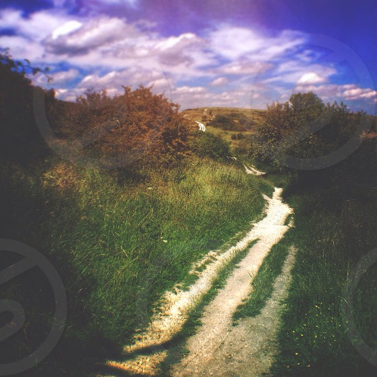 Pathway lime countryside landscape path forward hills trail earth nature photo