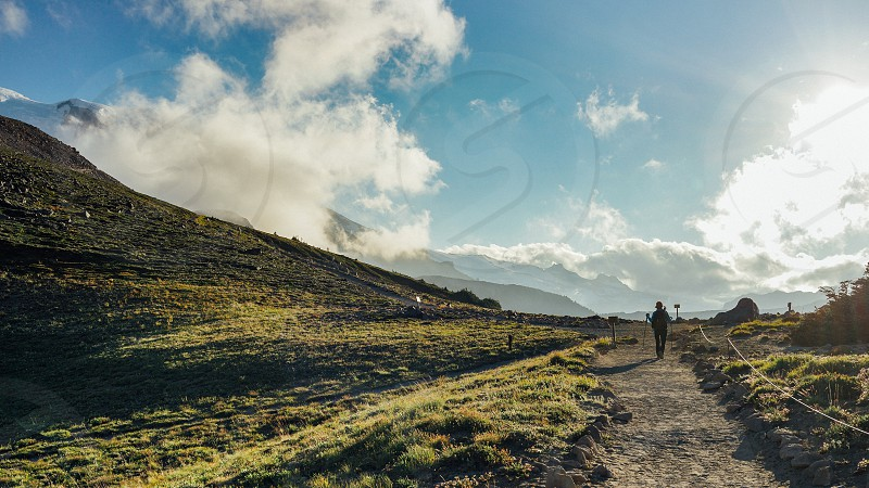 A hiker is hiking in the field at North Burroughs Mountain Trail with Mount Rainier in the background Washington. photo
