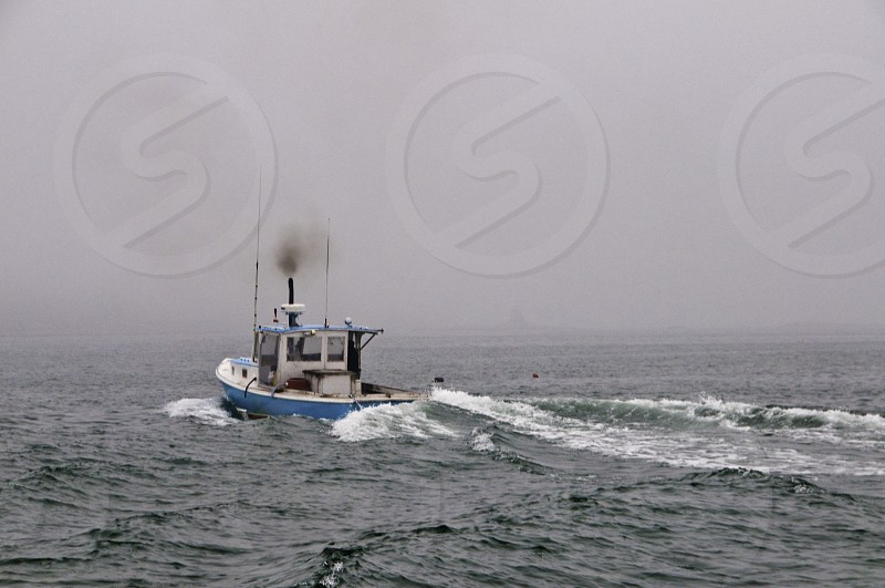 white and blue boat on sea photo