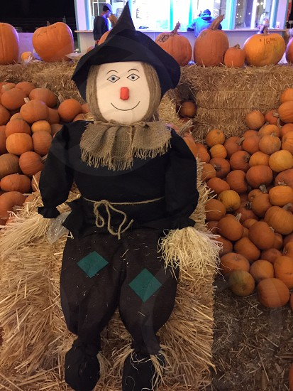 scarecrow sitting on stack of hay beside pumpkins decor photo