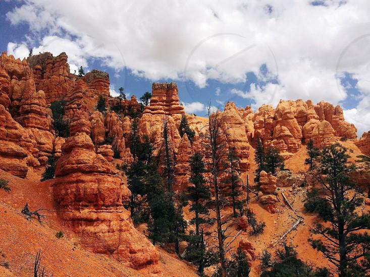 Bryce Canyon National Park photo