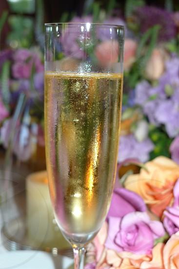 Champagne Glass photo