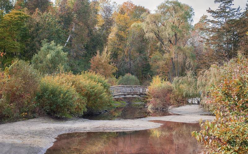 Fall colours at Edwards Gardens in Toronto. photo