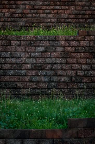 bricks & grass photo