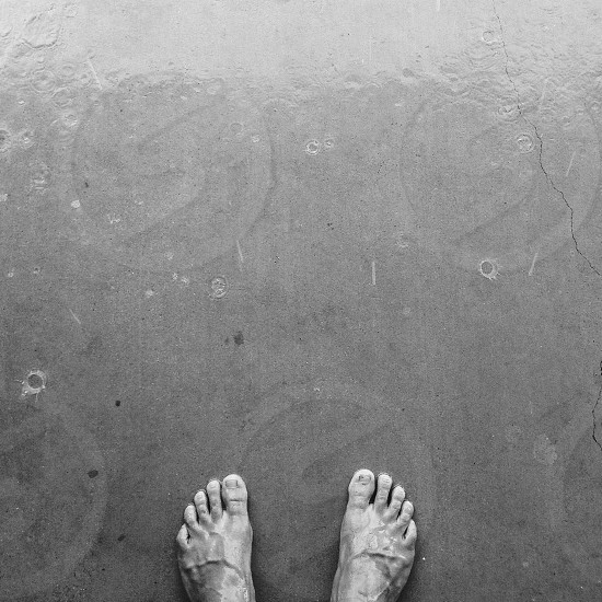 black and white photo of human feet photo
