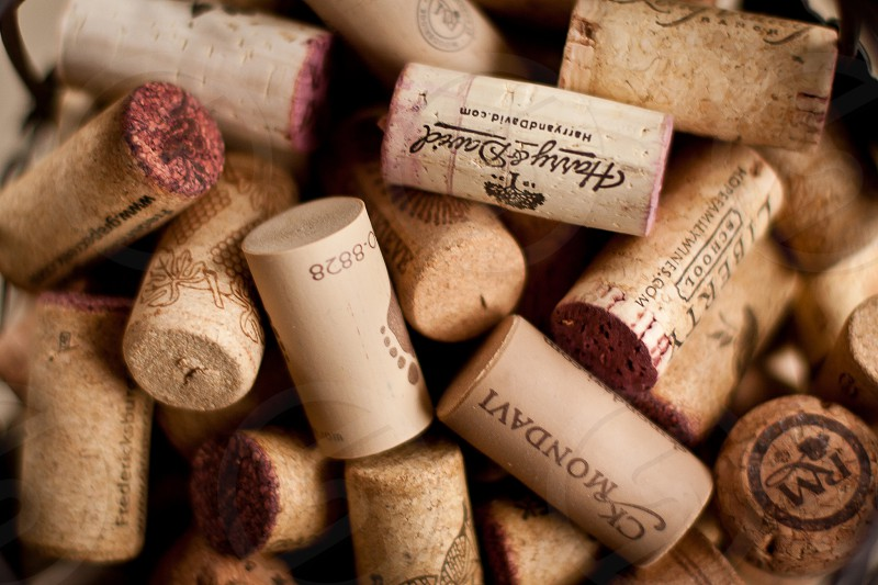 corks wine alcohol photo