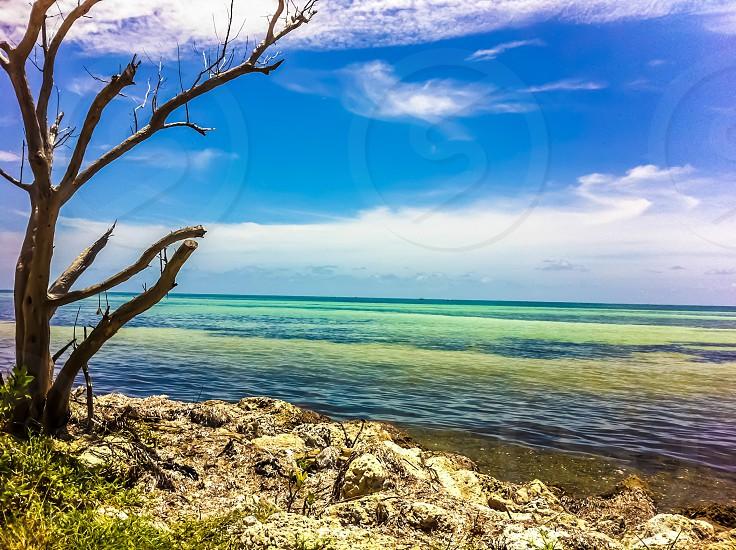 Bahia Honda State Park FL Keys photo