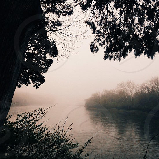 Foggy lake  photo