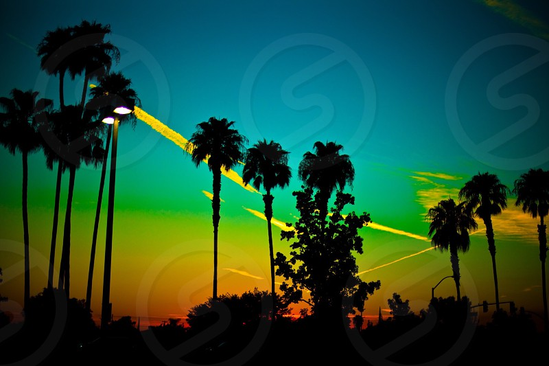 Nature sunset colorful California beauty photography love palm trees rainbow happy focus canon awesome edit photographer  photo
