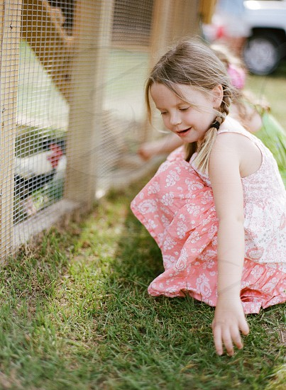 country country living chickens farm little girl kids fun exploring fresh from the farm photo